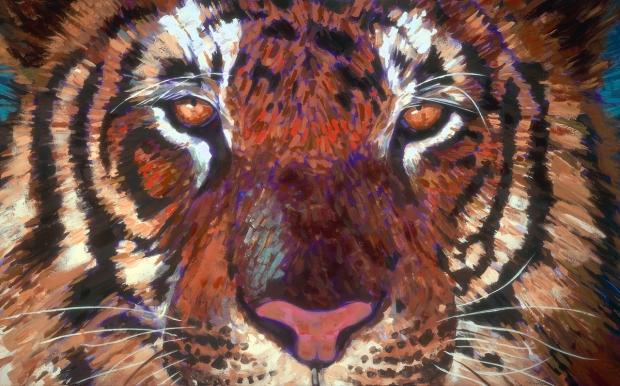 048 - Tiger