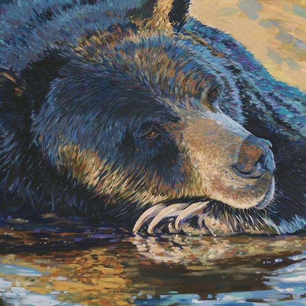 128 - Bear